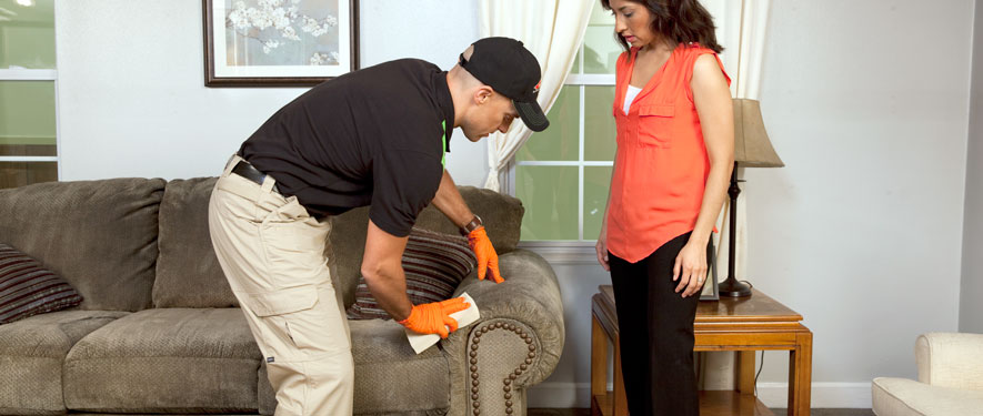 Los Gatos, CA carpet upholstery cleaning
